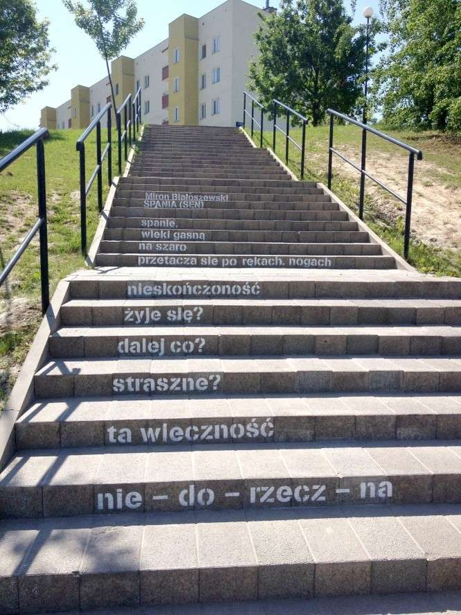 Miasto Poezji Potknij Się O Mądry Wiersz Na Schodach