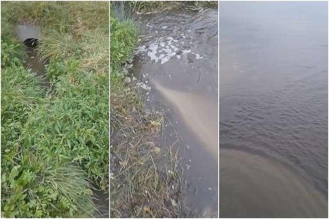 Randki jelenie jezioro