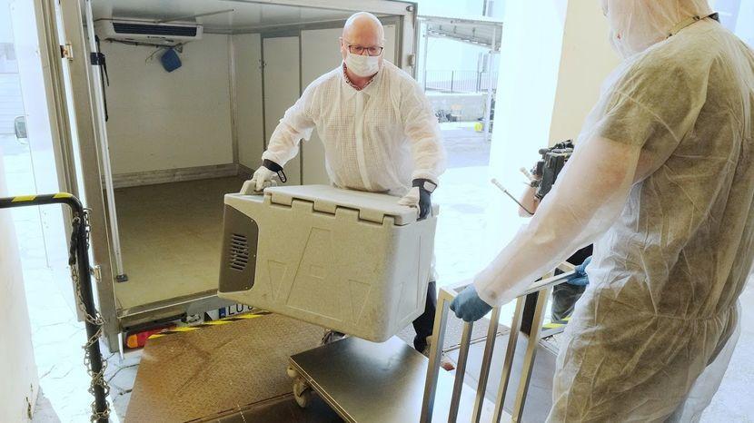 В Польше запустили производство лекарства от коронавируса
